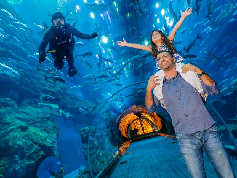 Burj Khalifa Ticket And Underwater Aquarium Tickets - NAHT