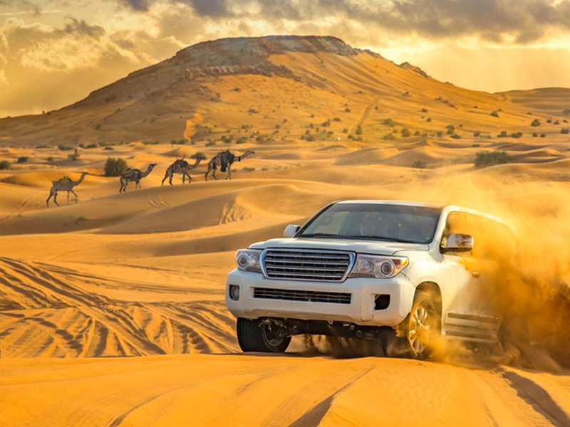 Evening Red Dunes Desert Safari With Delicious BBQ Dinner - NAHT